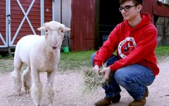 FFA students get a taste of ranch life