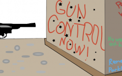 Load up, lock up, and own up to state gun control laws