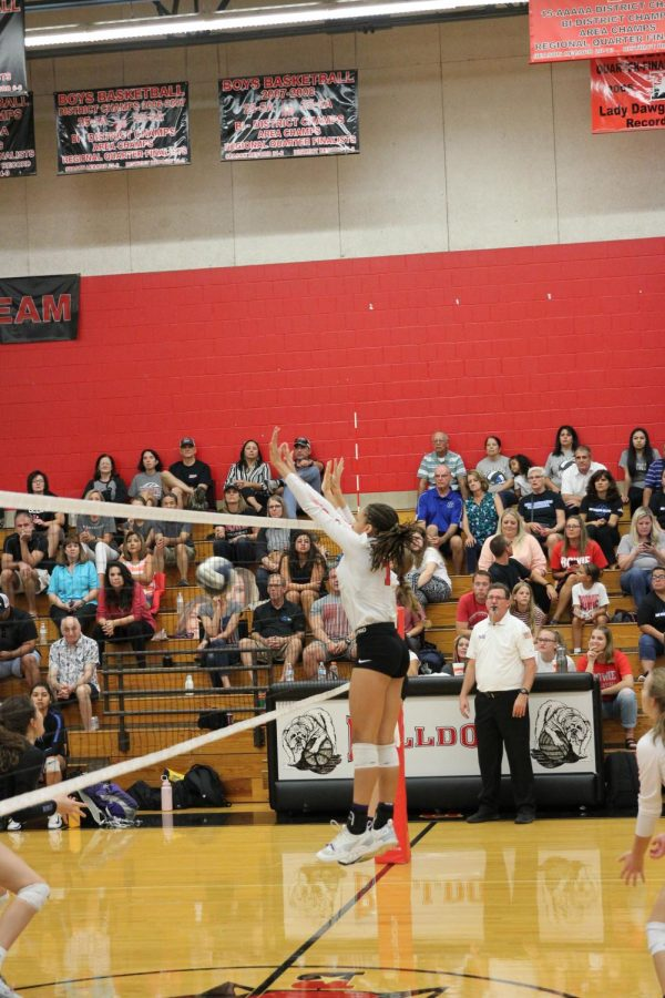 Junior Maya Johnson set the ball at a volleyball game this season. Volleyball seasons serves as a great opportunity and experience for players.