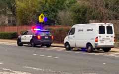 Attempted abduction in Southwest Austin