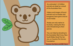 The problem associated with the  Australian fires