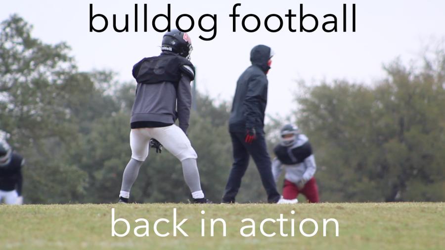 Bulldog football back in action