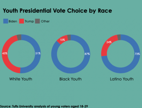 Social issues and the pandemic motivate young voters