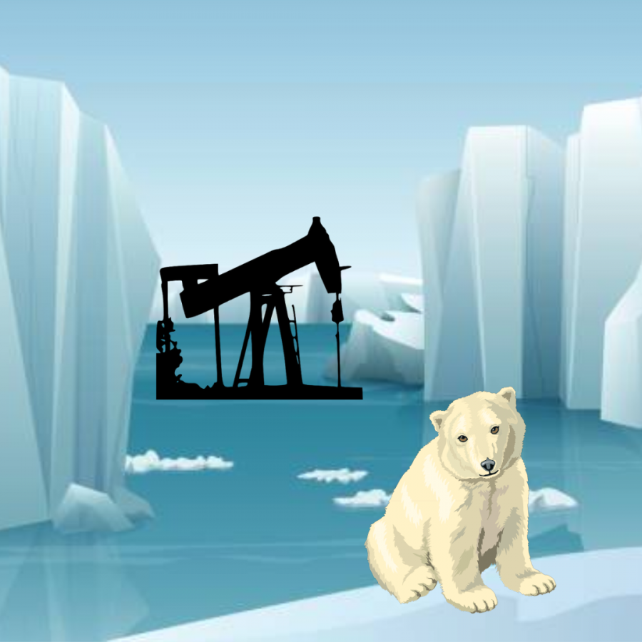 Is arctic oil drilling beneficial?