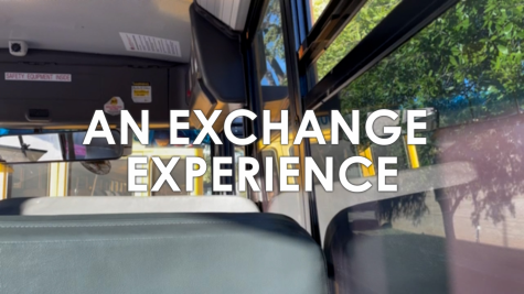An exchange experience